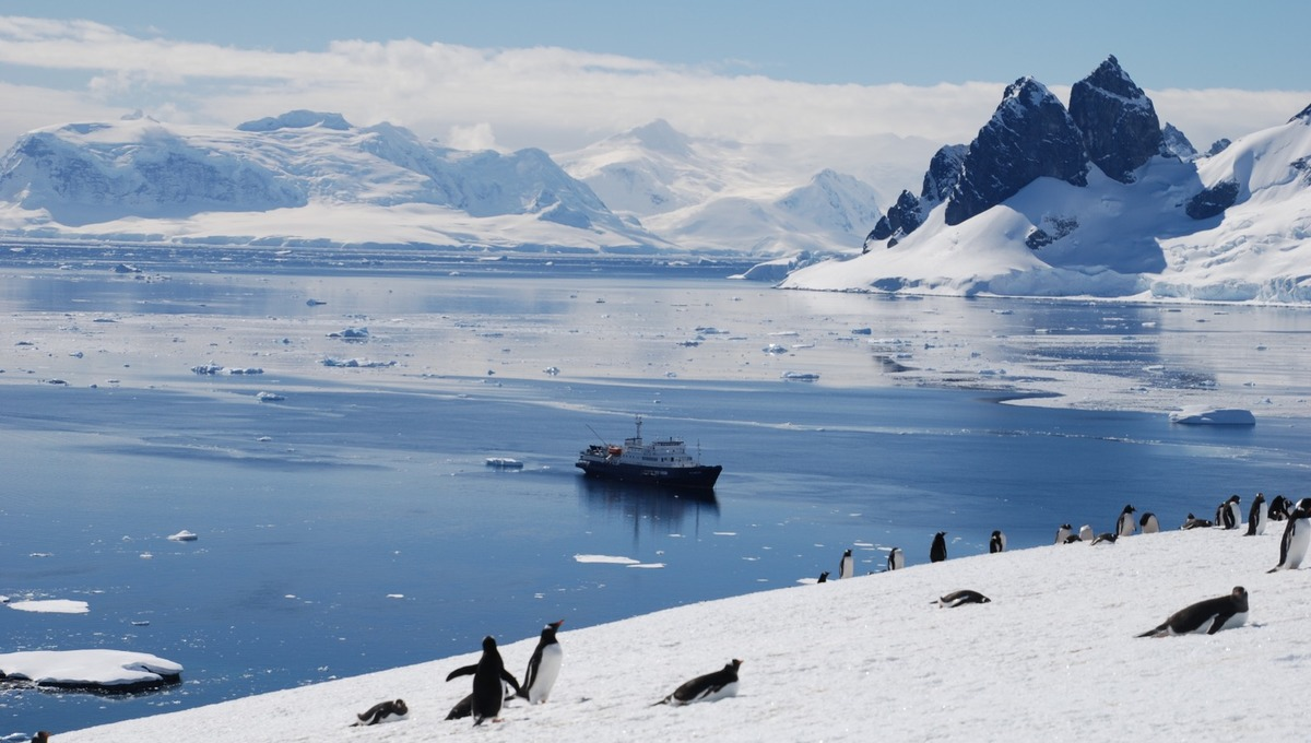 Oceanwide Expeditions - Plancius in Antarctica