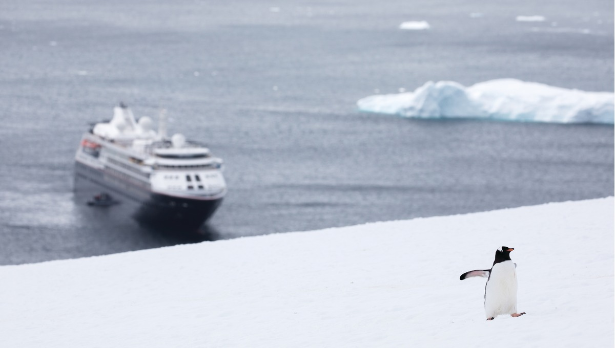 Silver Cloud and penguin in Antarctica