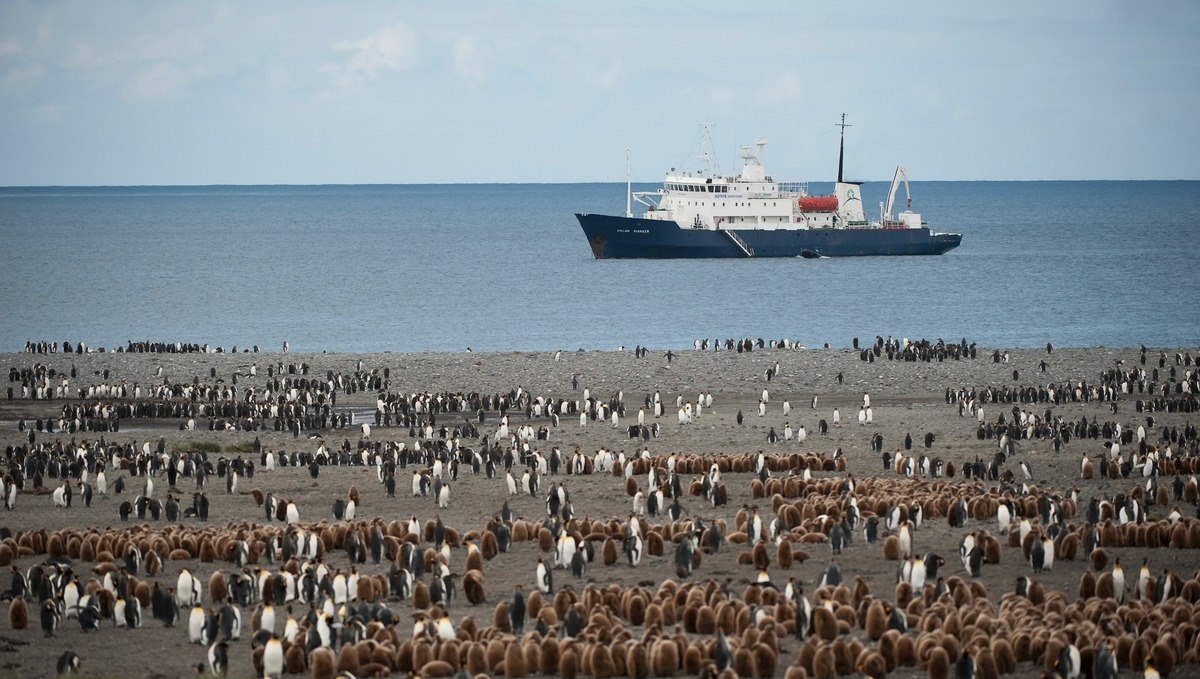 Aurora Expeditions - Polar Pioneer in South Georgia