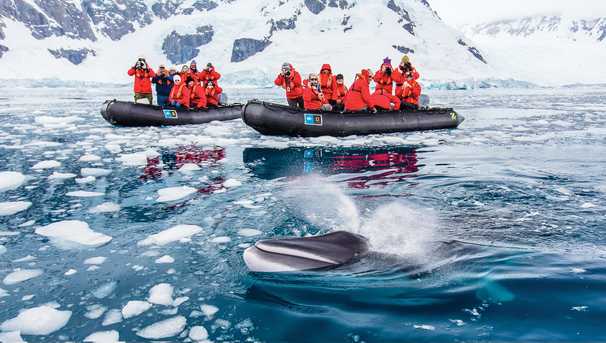 Expedition cruising - Lindblad in Antarctica