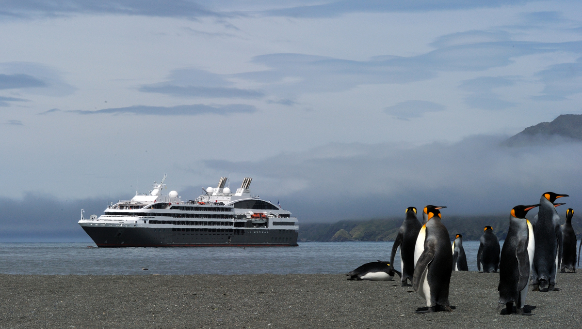 Ponant & National Geographic Expeditions in Antarctica