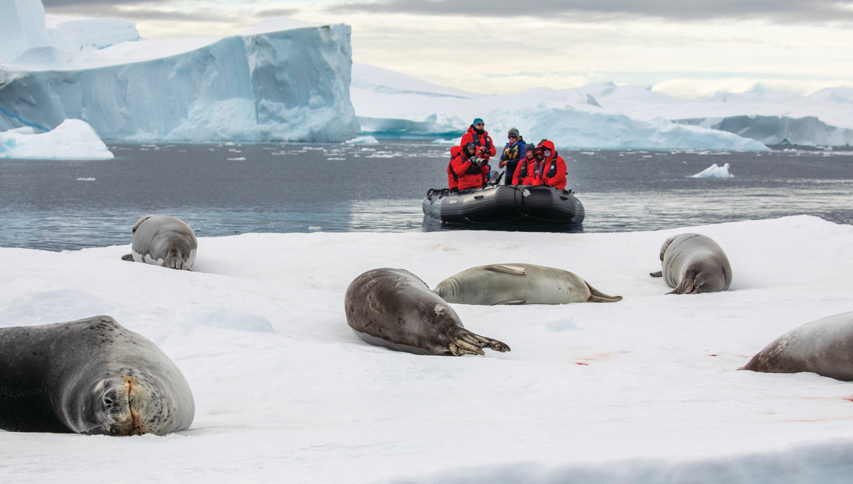 Tourists with cameras at the ready, a key item on your Antarctica cruise packing list