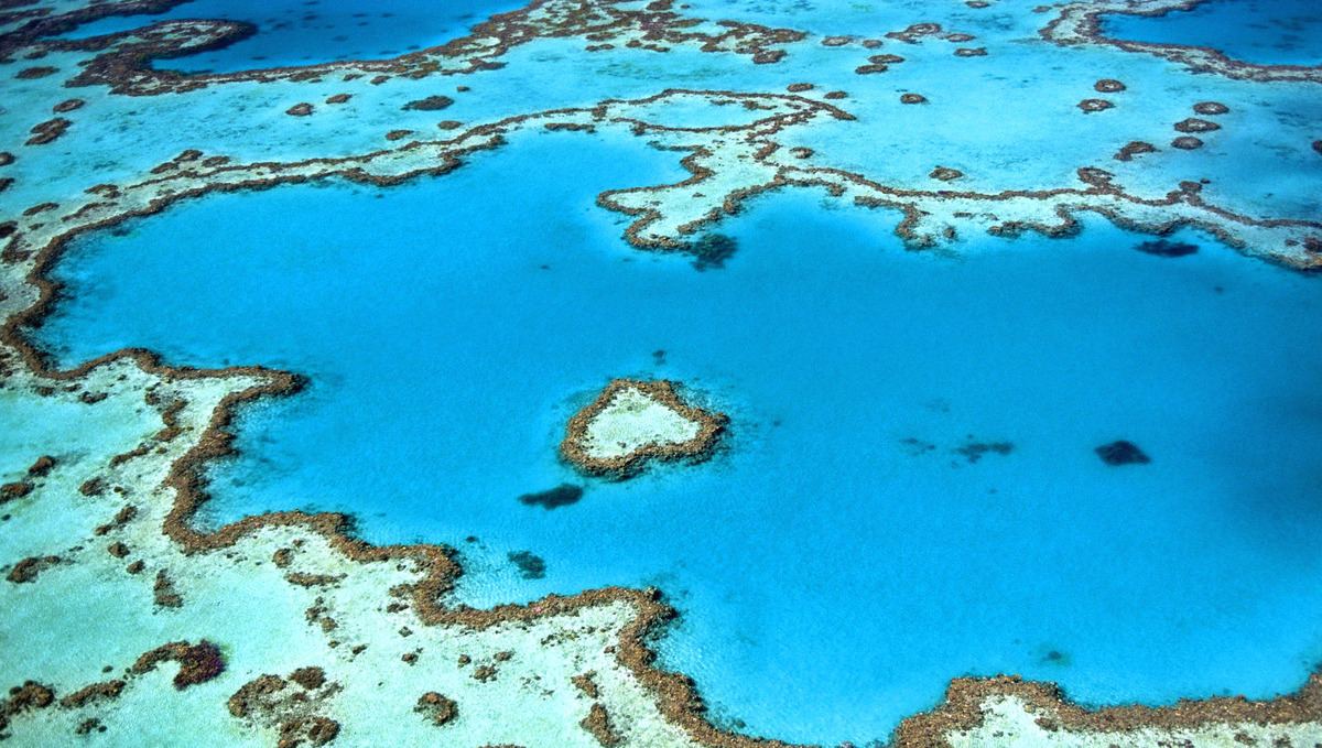 Australasia & Pacific cruises - Great Barrier Reef