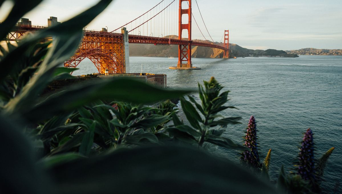 North America & Caribbean cruises - San Francisco