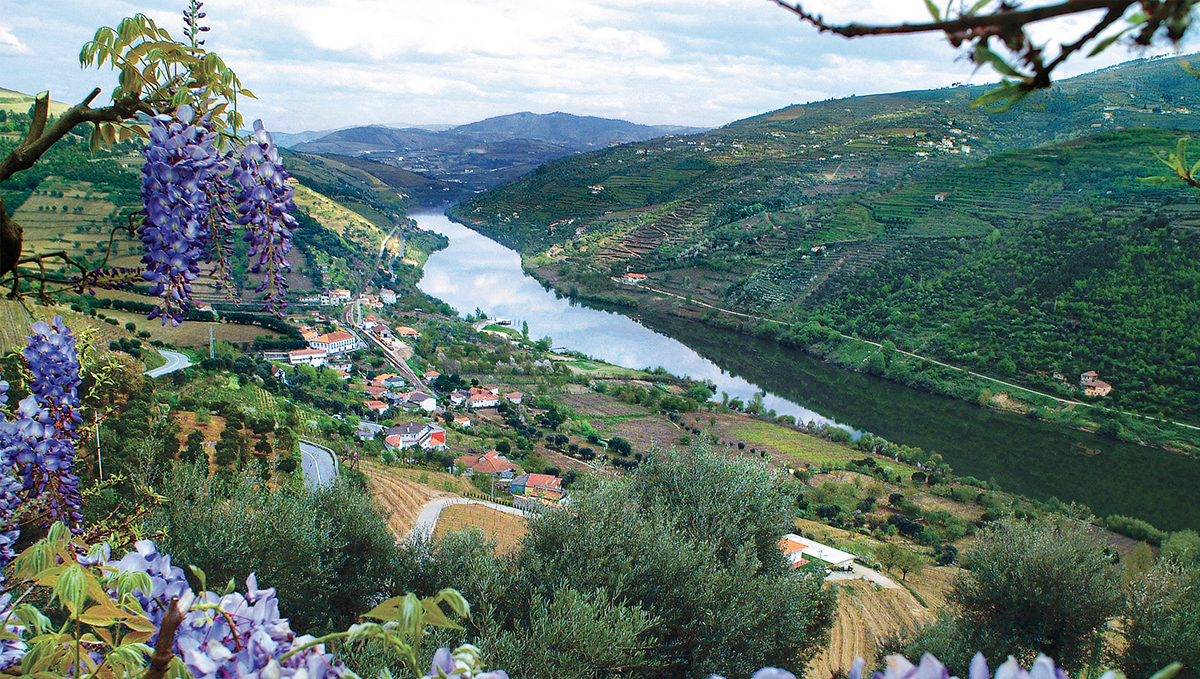 The beautiful Douro river - read our Douro river cruise guide to find out more