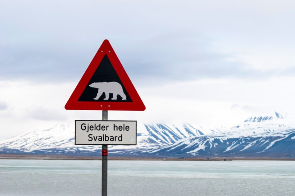 Polar bear warning sign in Svalbard