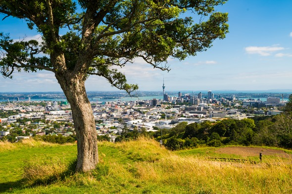 Panoramic view of Auckland, New Zealand