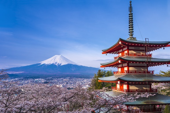 Cherry blossom season, Mount Fuji, Japan