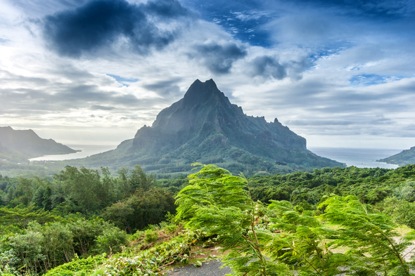 Landscape, Tahiti
