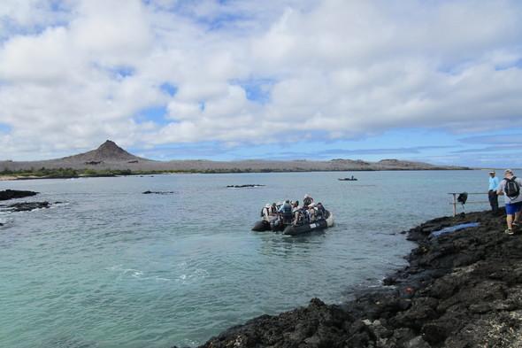 Silver Galapagos - Zodiac landing on Isabela
