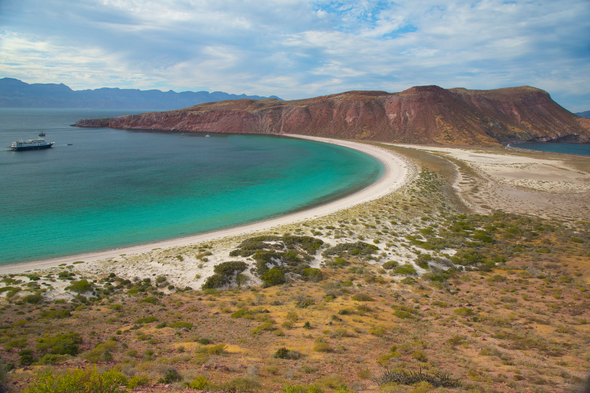 Sea of Cortez, Mexico