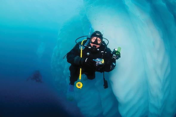 Aurora Expeditions - Diving in Antarctica