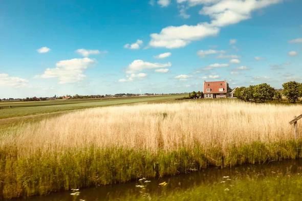 Countryside around Amsterdam