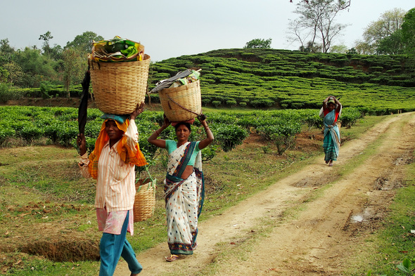 Locals in Assam on a Brahmaputra river cruise, India