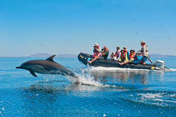 Lindblad Expeditions - Zodiac in the Sea of Cortez