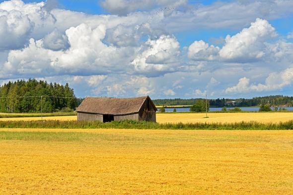 Rural landscape on the Aland Islands