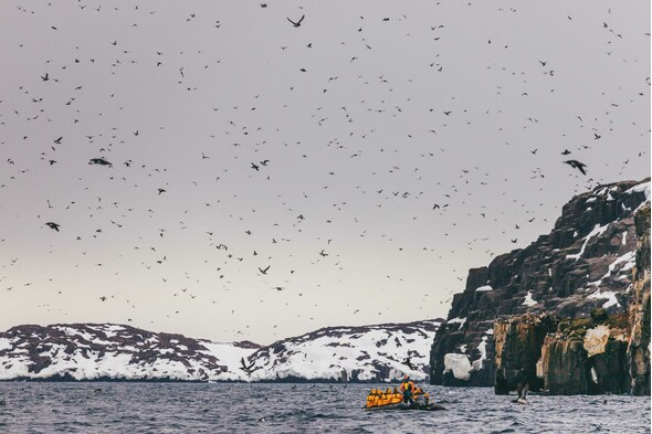 Quark Expeditions - Zodiac excursion in Spitsbergen to view seabirds
