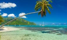 Beach in Moorea, French Polynesia