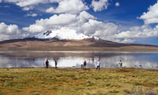 Central & South America cruises - Chungara Lake in Chile