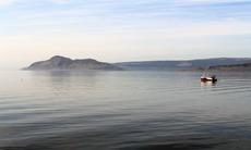 Holy Isle, Scotland