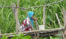Cham Muslim village in Chau Doc, Vietnam