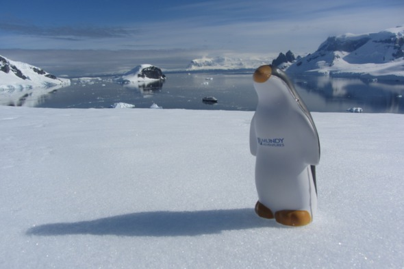 Antarctica Danco Island