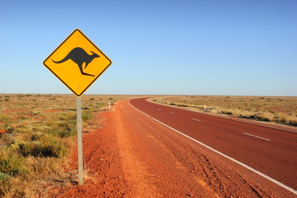 Kangaroo sign in Australia