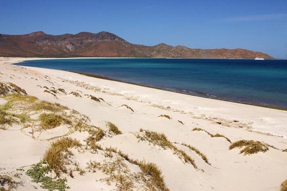 Beach on Espiritu Santo Island in the Sea of Cortez, Mexico