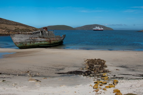Shipwreck on New Island, the Falklands
