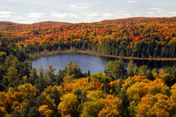 The best Canada cruises, including incredible fall colours