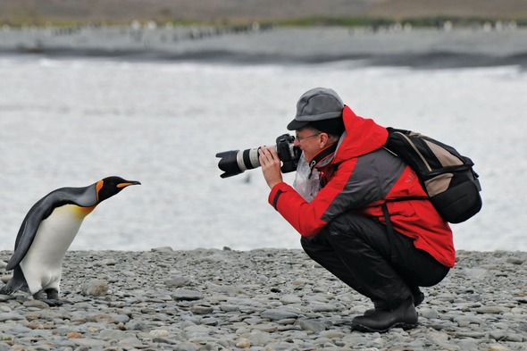 Silversea Expeditions - Photographing a penguin in Antarctica