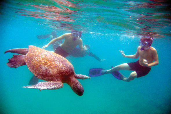 Lindblad Expeditions - Snorkelling in the Galapagos
