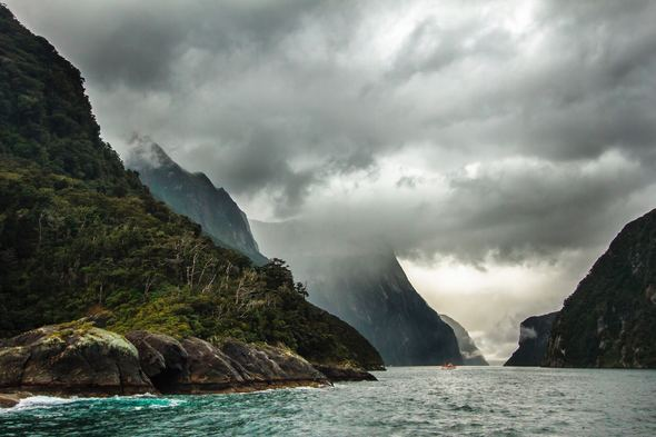 New Zealand expedition cruise in Milford Sound