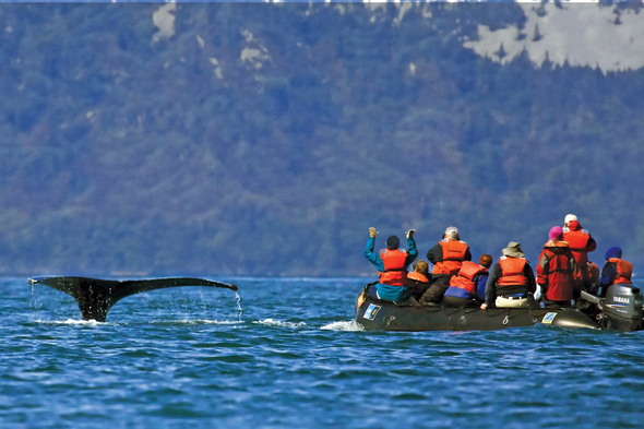 Lindblad Expeditions - Zodiac and whale in Alaska