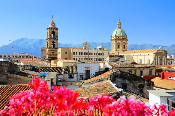 Spring flowers in Palermo, Sicily