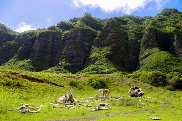 Kualoa Ranch, Hawaii