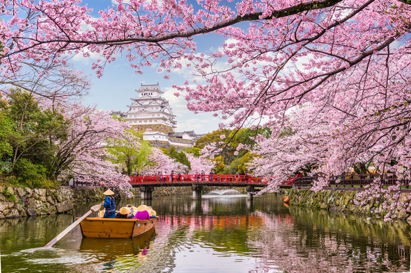 Himeji Castle in Japan, one of the best garden cruise destinations