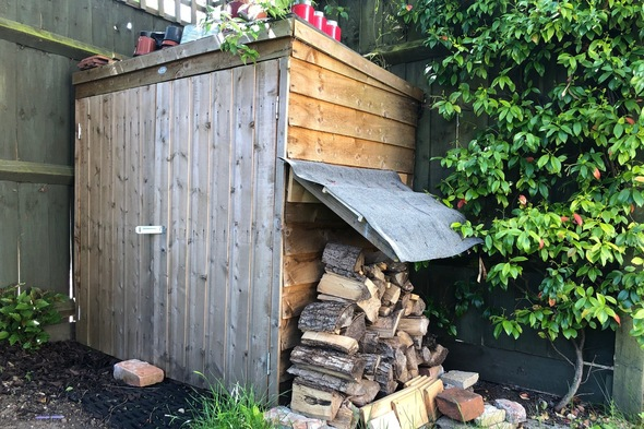 Alex's shed extension