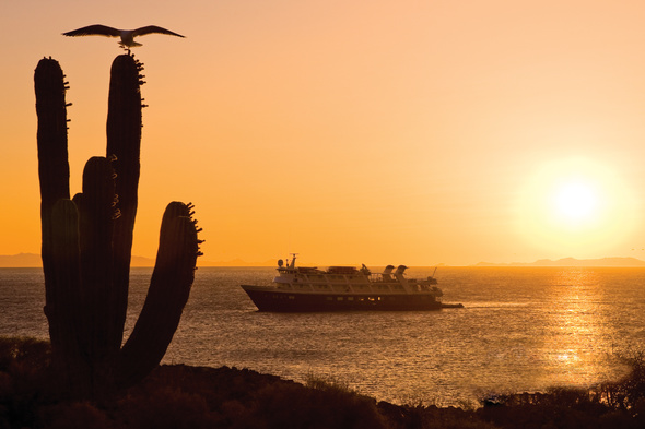 Lindblad Expeditions cruise in the Sea of Cortez, Baja California, Mexico