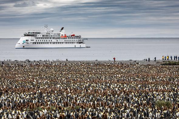 Aurora Expeditions' Greg Mortimer in Antarctica