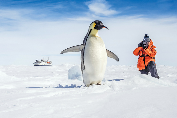 Photographing penguins on a Lindblad Expeditions cruise to Antarctica