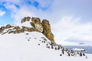 Half Moon Island, South Shetland Islands, Antarctica