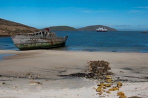 Shipwreck on New Island, Falklands
