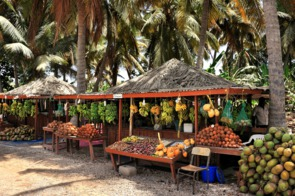 Fruit stall in Salalah, Oman
