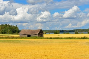 Rural landscape in the Aland Islands, Finland