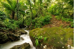 Waterfall in the Darien Jungle, Panama