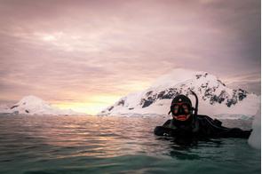 Aurora Expeditions - Snorkelling in Antarctica