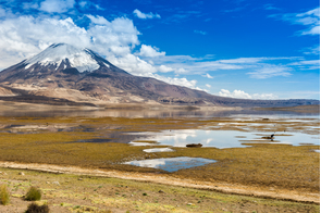 Parinacota volcano in Lauca National Park, Chile