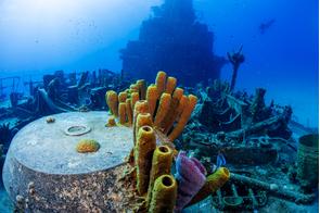 Tibbetts shipwreck, Cayman Brac, Cayman Islands