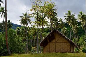 Traditional house on Pentecost Island, Vanuatu